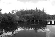 Streetscenes Photos - BIG SKY ON THE NORTH FORK RIVER in BLACK AND WHITE by Rob Hans