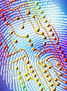 Biometric Fingerprint Scan Print by Pasieka