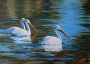 White Pelicans Framed Prints - Birds of a Feather Framed Print by Billie Colson