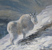 Mountain Goat Painting Prints - Bit of Open Browse Print by Mary Ann Cherry