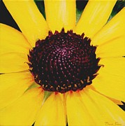 Thomas Faires Art - Black Eyed Susan by Thomas Faires