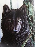 Wolf Portrait Paintings - Black Wolf by Sandi Baker