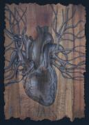 Anatomical Mixed Media Prints - Bleeding Heart Print by Joe Dragt