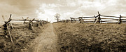 Sharpsburg Photos - Bloody Lane Antietam by Jan Faul