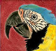 Portraits Ceramics - Blue and Gold Macaw by Dy Witt