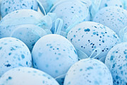 Spots  Art - Blue Easter eggs by Elena Elisseeva