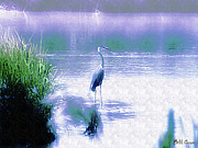 Everglades Digital Art - Blue Heron by Bill Cannon