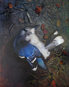 Earth Tones Metal Prints - Blue Jay Metal Print by Cap Pannell