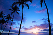 Kamaole Beach Art - Blue sunset by Ivan SABO