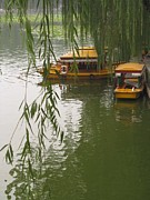 Alfred Ng - boat with willow