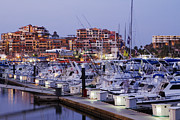 Cabo San Lucas Prints - Boats in a Marina Print by Jeremy Woodhouse