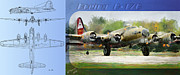 Airplane Framed Prints - Boeing B-17-G Framed Print by Arne Hansen