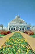 Struckle Framed Prints - Botanical Gardens Framed Print by Kathleen Struckle