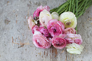 Focus On Foreground Art - Bouquet Of Pink Ranunculus by Elin Enger