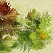 Plants Tree Art Mixed Media - Breadfruit by Kaypee Soh - Printscapes