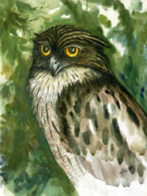 Sri Lankan Artist Paintings - Brown Fish Owl  by Sasitha Weerasinghe