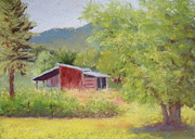 Shed Pastels - Browns Shed by Nancy Jolley