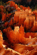 Bryce Canyon National Park Posters - Bryce Canyon Poster by Harry Spitz