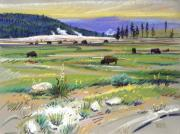 Buffalo Pastels Posters - Buffalo in Yellowstone Poster by Donald Maier