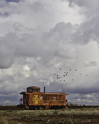 Mancave Photos Prints - Caboose in a Cotton Field Print by Melany Sarafis