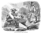 1850s Prints - California Gold Rush, 1860 Print by Granger