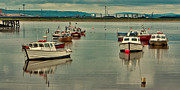 River Tees Prints - Calm Waters Print by Trevor Kersley
