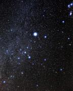 Canis Major Constellation Print by Eckhard Slawik