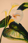 Canna Paintings - Canna Lily by Lynn Beazley Blair