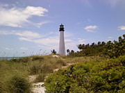Cape Florida Lighthouse Art - Cape Florida by Tiffney Stevens