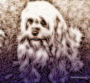 Puppy Digital Art - Cassie Girl by Robert Orinski