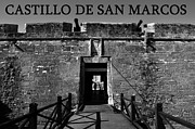Matanzas Posters - Castillo De San Marcos Poster by David Lee Thompson