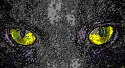 Cat Eyes Digital Art - Cat Eyes by David Lee Thompson
