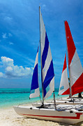 Day Summer Prints - Catamarans on the Beach  Print by Jenny Rainbow
