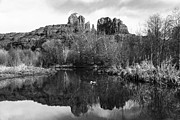 Cathedral Rock Posters - Cathedral Rock Reflections Landscape Poster by Darcy Michaelchuk
