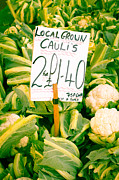 Locally Grown Metal Prints - Cauliflower Metal Print by Tom Gowanlock