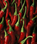 Peppers Prints - Cayenne Print by Daniel Troy