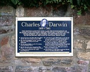 Home Plate Framed Prints - Charles Darwin Commemorative Plaque Framed Print by Martin Bond