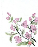 Cherry Blossoms Painting Prints - Cherry Blossoms Print by Ellen Miffitt