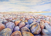 Nature Painting Prints - Chesil Beach Print by Merv Scoble