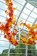 Kimberly Deverell - Chihuly Garden and Glass