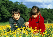 Enjoying Prints - Children In A Meadow Print by Andy Harmer