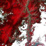Comparison Framed Prints - Chinas Sichuan Province Framed Print by Nasa