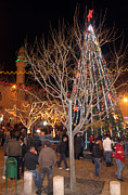 Manger Posters - Christmas Tree at Manger Square  Poster by Munir Alawi