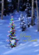 Snowy Night Photo Posters - Christmas Tree on a Snowy Hillside Poster by Utah Images