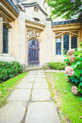 Geranium Photos - Church door by Tom Gowanlock