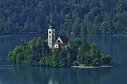 Bled Prints - Church of Mary on Bled Island Print by Don Wolf