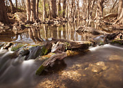 The Nature Center Photo Posters - Cibolo Creek Poster by Paul Huchton