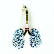 Cigarette Posters - Cigarette Filled Lungs Poster by Kevin Curtis