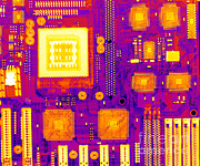 Mother Board Prints - Circuit Board Print by Ted Kinsman