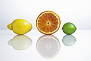 Citrus Framed Prints - Citrus Fruits Framed Print by Joana Kruse